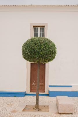 Quinta de SantAna-3